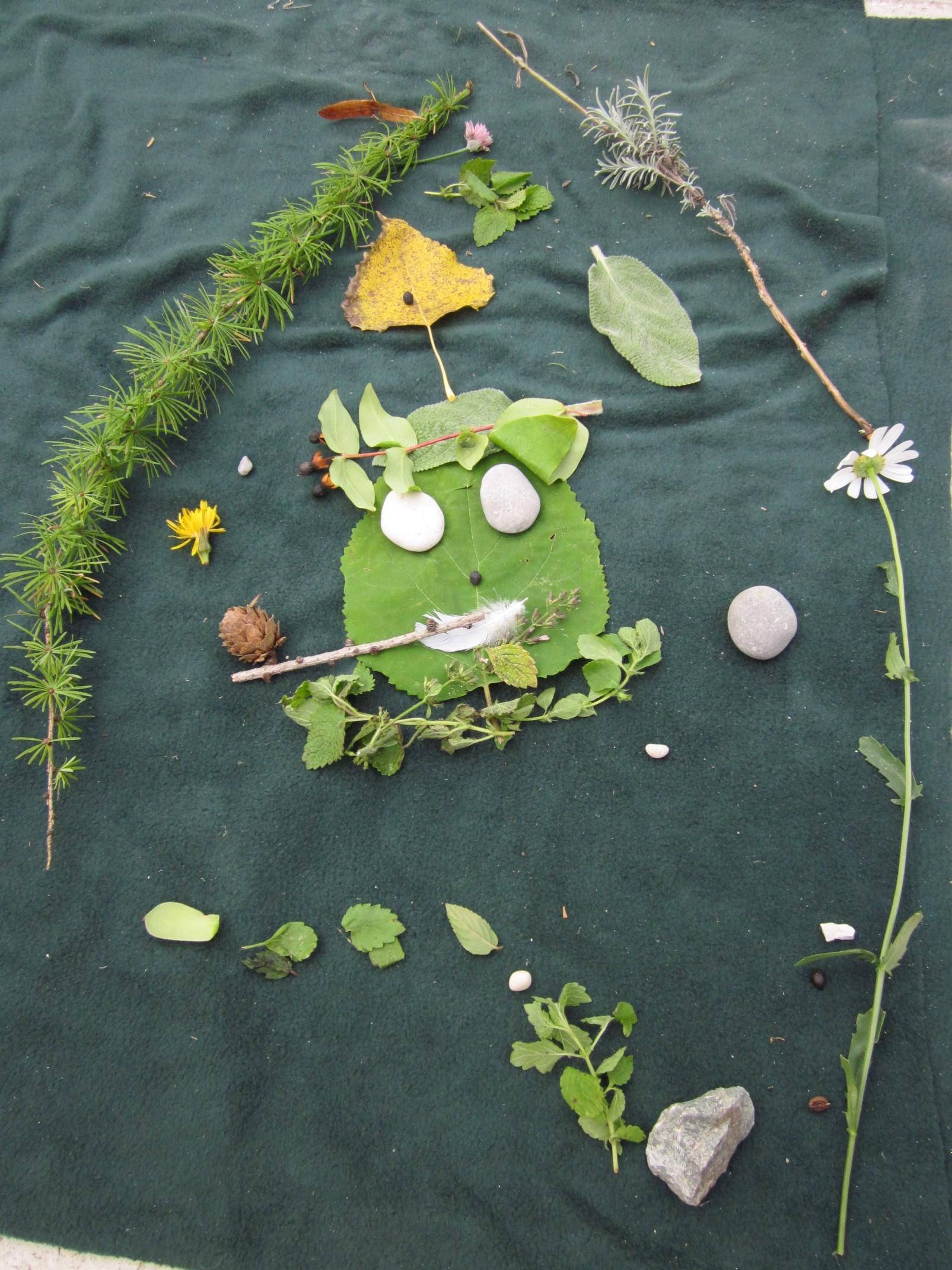 Gozdne ustvarjalnice