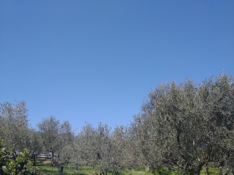 Fotografija modrega neba